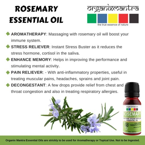 Aromatherapy Uses of Rosemary Essential Oil